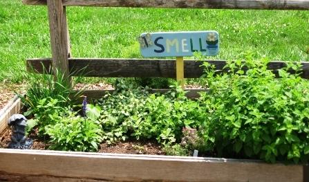 1-08-08_childrensgarden_smell-garden-060109