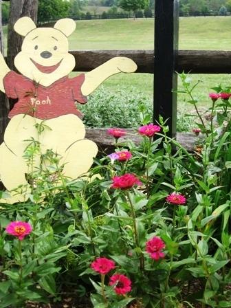 pooh-and-zinnias-092209