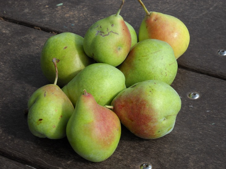 pears-080310sm