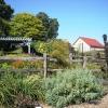 Garden view toward west