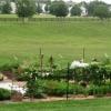 Veggie Area view