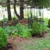boxwoods-042611