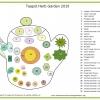 teapot-herb-flyer-10