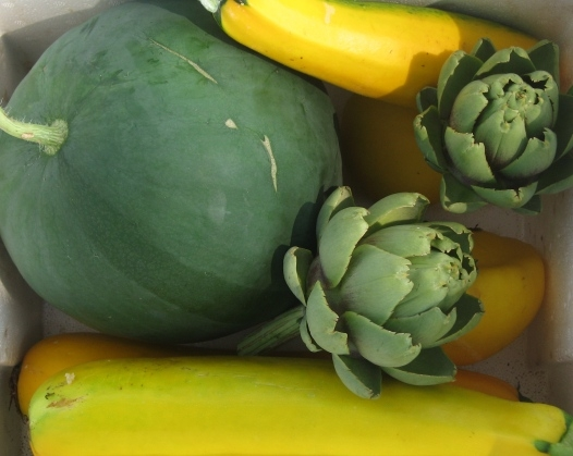 Watermelon and Artichokes
