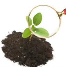 Help Desk Loudoun County Master Gardeners